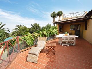 Casa Canarina - Santa Ursula vacation rentals