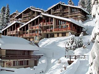 Les Arsets 01/305 - Alpe des Chaux vacation rentals