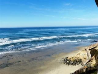 Ocean View Luxury Condo,a Few Steps to Beach - Solana Beach vacation rentals