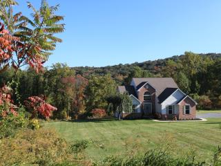 Private Mountain Escape! 4 Bedrooms +Entertainment - Robesonia vacation rentals
