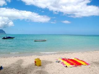La Preneuse sur Mer apartment a la plage. - Grande Riviere Noire vacation rentals