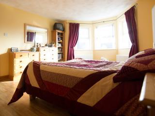 Gobbins Cliff, Islandmagee, Larne - Larne vacation rentals