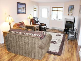 Skiing, Free Loon Shuttle, Fireplace, Indoor Pool, Hot Tub, Fit Ctr, Sauna, etc. - Lincoln vacation rentals