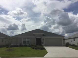 Charming 3 bedroom House in The Villages - The Villages vacation rentals