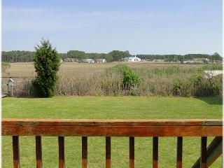 Charming House with Internet Access and Dishwasher - Chincoteague Island vacation rentals
