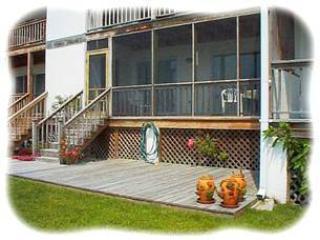 Panorama - Image 1 - Chincoteague Island - rentals