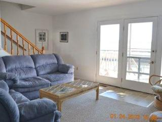 Lovely 3 bedroom House in Chincoteague Island with Internet Access - Chincoteague Island vacation rentals
