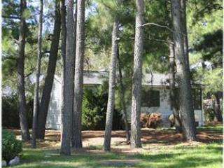 Bright 2 bedroom Chincoteague Island House with Internet Access - Chincoteague Island vacation rentals