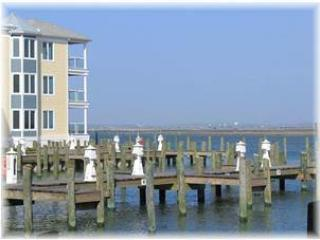 3 bedroom Condo with Internet Access in Chincoteague Island - Chincoteague Island vacation rentals