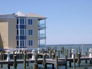 Perfect Chincoteague Island Condo rental with Internet Access - Chincoteague Island vacation rentals