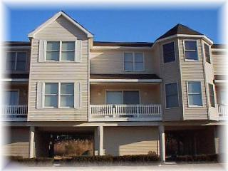 Beautiful Chincoteague Island House rental with Internet Access - Chincoteague Island vacation rentals