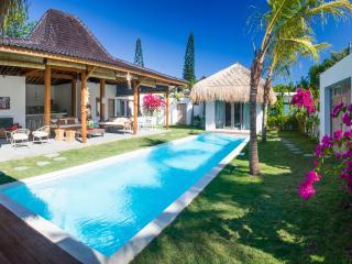 Beautiful new 4 bedrooms villa at Kudeta - Seminyak vacation rentals