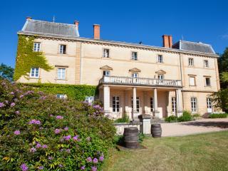 Château de Bellevue appartement - Villie-Morgon vacation rentals