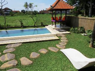 Villa Blue Cat Ubud - Lodtunduh vacation rentals