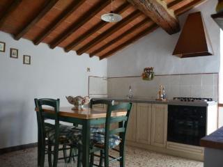 Ornella G - Casole D'elsa vacation rentals