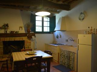 Beautiful 2 bedroom House in Casole D'elsa with Internet Access - Casole D'elsa vacation rentals