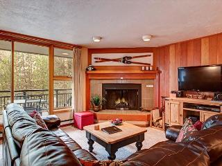 2BR Mountain-View Condo in Keystone – Easy Slopes Access! - Dillon vacation rentals