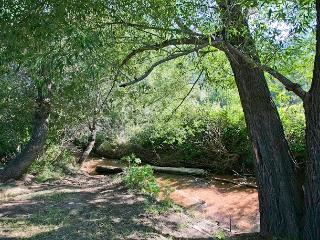 4 Bedroom Unit on a Mountain Stream on Pikes Peak! - Cascade vacation rentals