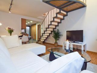GORGEOUS DUPLEX WELL CONNECTED TO THE CENTER - Barcelona vacation rentals