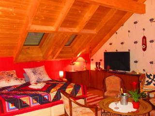 SUITE CONFORT Forêt-Noire avec grand balcon - Offenburg vacation rentals