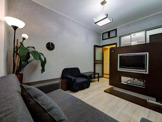Nice Condo with Long Term Rentals Allowed (over 1 Month) and Stove - Saint Petersburg vacation rentals