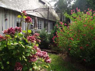 Cozy 2 bedroom House in Veules-les-Roses with Parking - Veules-les-Roses vacation rentals