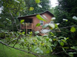 FOX CREEK WATERSIDE CABIN near the Smoky Mountains - Bryson City vacation rentals
