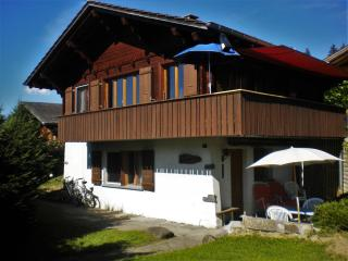 Chalet-style studio in the Swiss Alps with garden, 20m from the slopes - Reichenbach vacation rentals