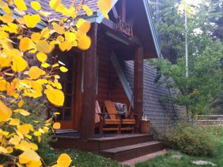 Luxury River Front Cabin in Colorado Mountains - Idaho Springs vacation rentals