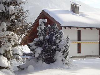 Seekarblick - Achenkirch vacation rentals