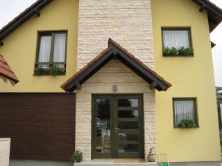 Nice 7 bedroom Villa in Zlatibor - Zlatibor vacation rentals