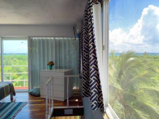 VANESSA OCEAN VIEWS & TERRACE 250 MT F. THE BEACH - Playa del Carmen vacation rentals