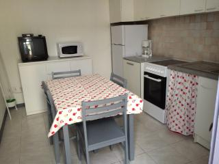 Appartement T2 N1 RDCH centre ville - Le Grau Du Roi vacation rentals