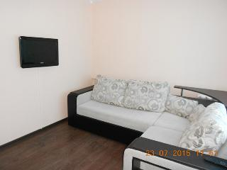 Nice Condo with Internet Access and Satellite Or Cable TV - Bugulma vacation rentals