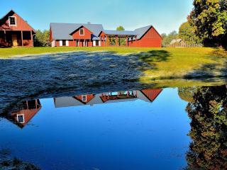 Nice Villa with Internet Access and Dishwasher - Druskininkai vacation rentals