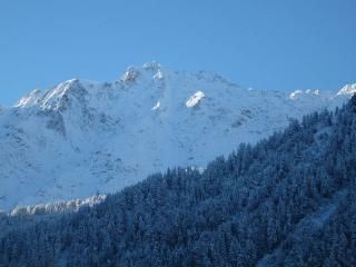 Nice Condo with Internet Access and Parking - Peisey-Nancroix vacation rentals