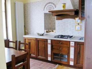 Apartments in Piedmont, green hills, wine e relax - Cossombrato vacation rentals