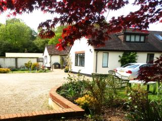 Welcoming House in Beautiful Surrey Hills - Guildford vacation rentals