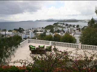 Spectacular view- room rent 50 Euro - Bodrum vacation rentals
