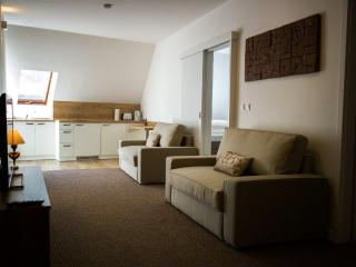 Comfortable Condo with Internet Access and Housekeeping Included - Komarno vacation rentals