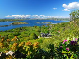 Nice 1 bedroom Craobh Haven Cottage with Satellite Or Cable TV - Craobh Haven vacation rentals