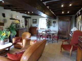LA LOGE DES VIGNES - Menetou-Salon vacation rentals