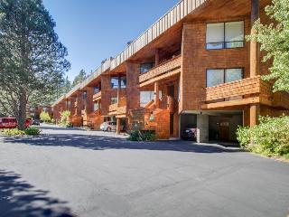 Chic, ski-in/ski-out, dog-friendly condo w/great mountain views, perfect locale - Olympic Valley vacation rentals
