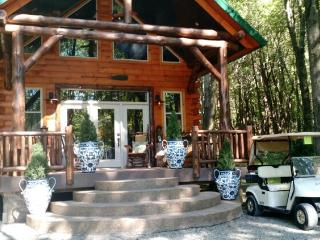 Columbia Woodlands Lakeside Cabin - Dover vacation rentals