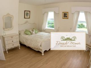 Luxurious B&B manor - Dundalk vacation rentals