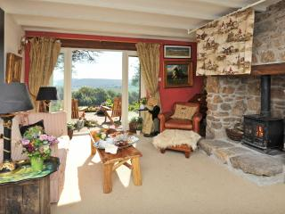 Hatchwell Lodge, Dartmoor National Park - Widecombe in the Moor vacation rentals