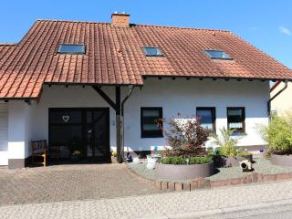 LLAG Luxury Vacation Apartment in Sankt Wendel - 646 sqft, clean, quiet, modern (# 4618) - Saint Wendel vacation rentals