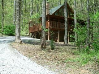 BEARLY VISIBLE - Sevierville vacation rentals
