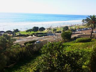 Beautiful Del Mar Condo at Del Mar Beach - Del Mar vacation rentals