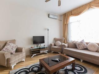 Big and comfort apartment Harbiye - Istanbul vacation rentals